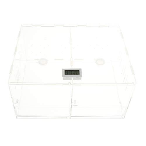 D DOLITY Transparent Terrarium Zuchtbox für Reptilien und Amphibien - Doppel-Lagerhaus Box