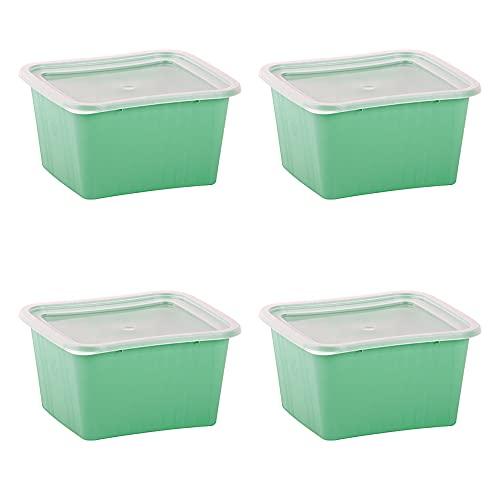 Set de 4 Recipientes de 1L de Plástico para Comida, Táper Sin...