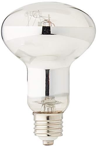 REPTILES PLANET lampe pour reptiles à vapeur de mercure UVA UVB Ultrasun 70w
