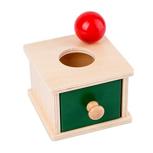 TOYANDONA Caja de Permanencia de Objetos Montessori de 1 Pieza con Pelota para Niños Juguetes Educativos para Niños Pequeños Ejercicio Juguetes de Coordinación Ojo-Mano (Estilo de Cajas de