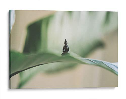 Cuadro decorativo de canvas (lienzo), Buda sobre hoja - Yoga & Zen & Religión, montado en bastidor de madera de 4.5 cm de profundidad (estilo galería). 180 x 120 cm. Tamaños adicionales disponibles. Perfecto para decorar casa u oficina, y especial para Sala & Dormitorio & Baño. 100% Garantizado.