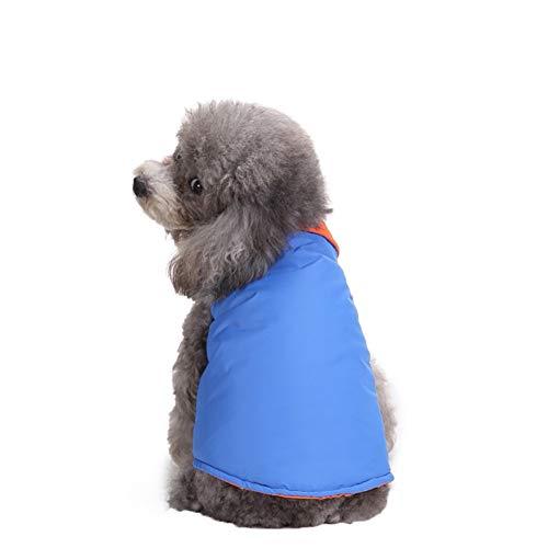 Bluelucon Hond kat Winter Jacket Huisdier Kostuum Hoodie Puppy Pupy Warm Indoor Outdoor Hondenjas Coat Kleding Chihuahua Pullover