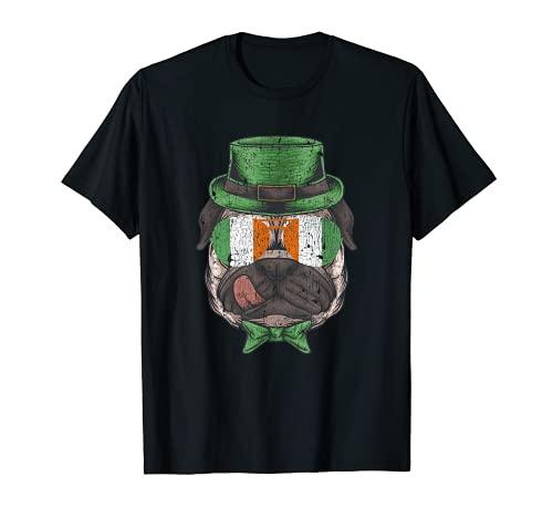 Día de San Patricio, bandera irlandesa, regalo vintage para niños y niñas Camiseta