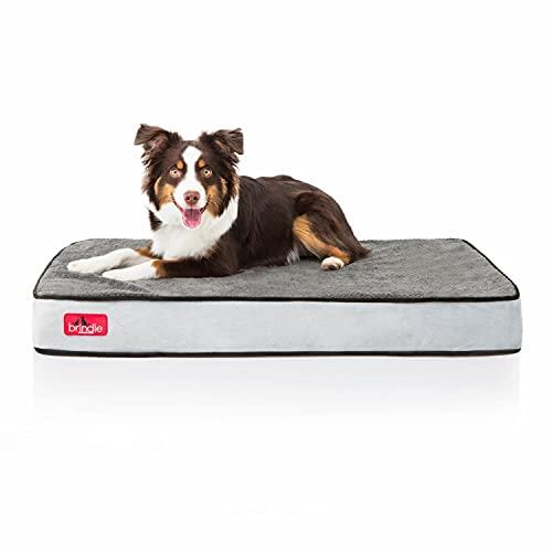 Brindle Solid Memory Foam Orthopedic Dog Bed