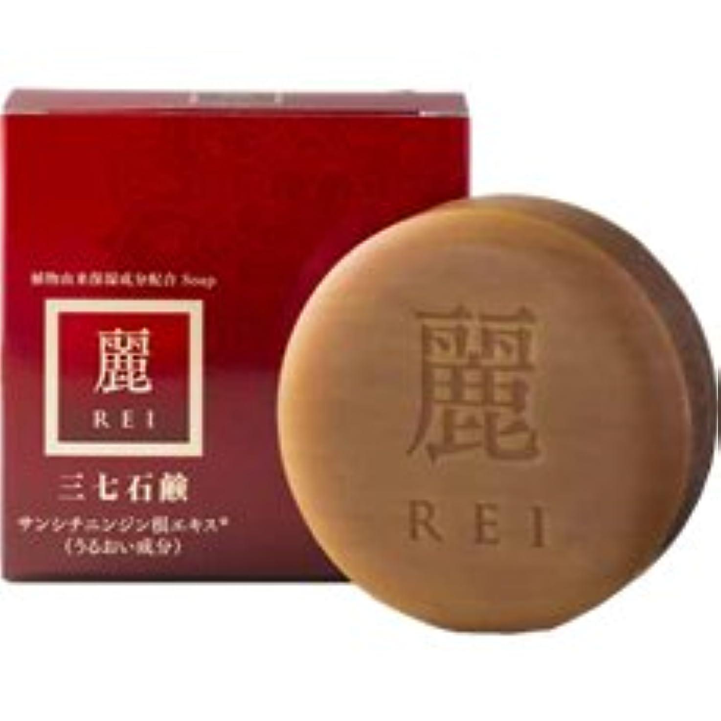 思慮深いダーツ許可三七石鹸 麗(れい) 100g
