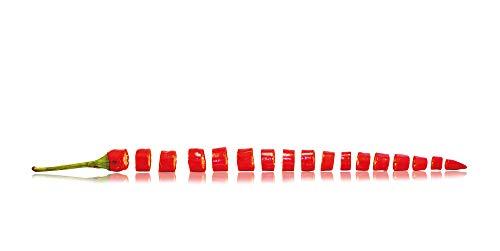 Dekobuddy Küchenrückwand, Spritzschutz 100x50 cm direkt auf 3mm Alu Verbundplatte Bedruckt, Keine Folie oder Hart PVC (Pepperoni in Scheiben)