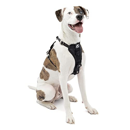Kurgo Dog Harness, Car Harness for Dogs, Front D-Ring for No Pull Training, Includes Dog Seat Belt...