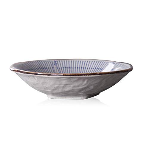 LIZANAN Tazones creativos 8 pulgadas cerámica poco profunda Bowl hogar vajilla arroz tazón cuencos