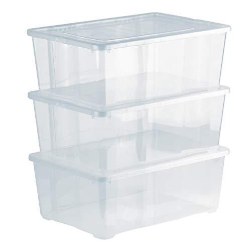 Grizzly 3 x Caja de Almacenaje con Tapa de 10 L - Cajón de Plástico Transparente Apilable - Caja Multiusos Organizador de Armarios para Ordenación de Ropa