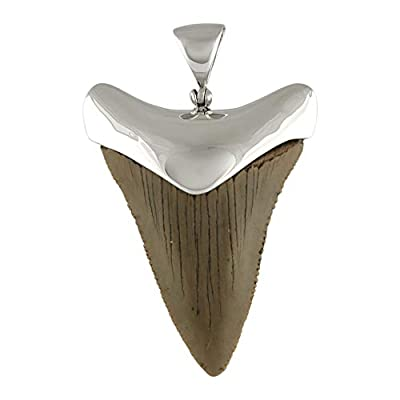 Fossil Giant Great White Shark Tooth Sterling Silver Pendant