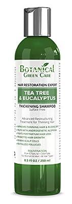 Tea Tree & Eucalyptus Sulfate-Free Caffeine SHAMPOO, Alopecia Prevention and DHT Blocker. Anti-Hair Loss/Hair Growth Shampoo. Doctor Developed