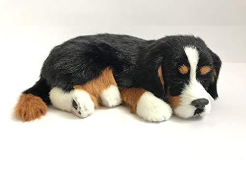 Perfect Petzzz Hundewelpe Berner Sennenhund , der richtig atmet The Breathing Puppy