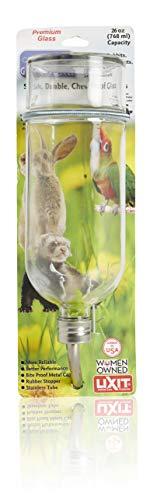 Lixit Chew Proof Flat-Back Glass Bottle for Rabbits, 26 Oz