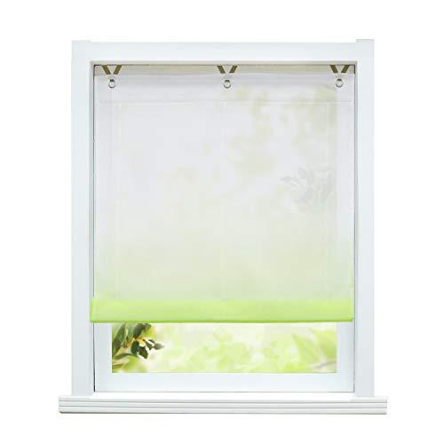 ESLIR Raffrollo ohne Bohren Raffgardine Transparent mit Ösen Farbverlauf Gardinen mit Haken Ösenrollo Modern Vorhänge Grün BxH 45x130cm 1 Stück