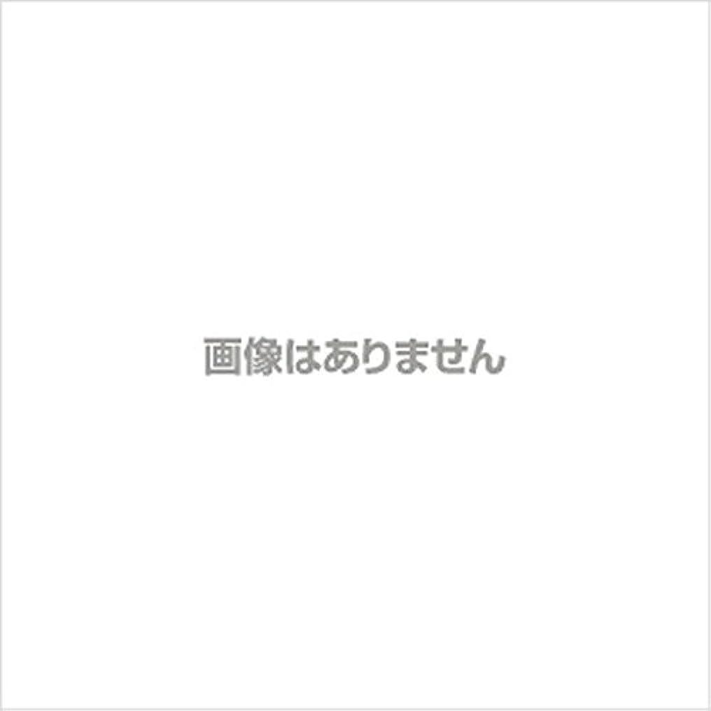 炭素待つヒューマニスティック新発売】EBUKEA エブケアNO1004 プラスチックグローブ(パウダーフリー?粉なし)Mサイズ 100枚入(極薄?半透明)