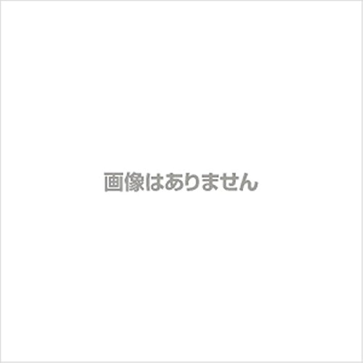 硬化する紫の泥棒新発売】EBUKEA エブケアNO1004 プラスチックグローブ(パウダーフリー?粉なし)Mサイズ 100枚入(極薄?半透明)