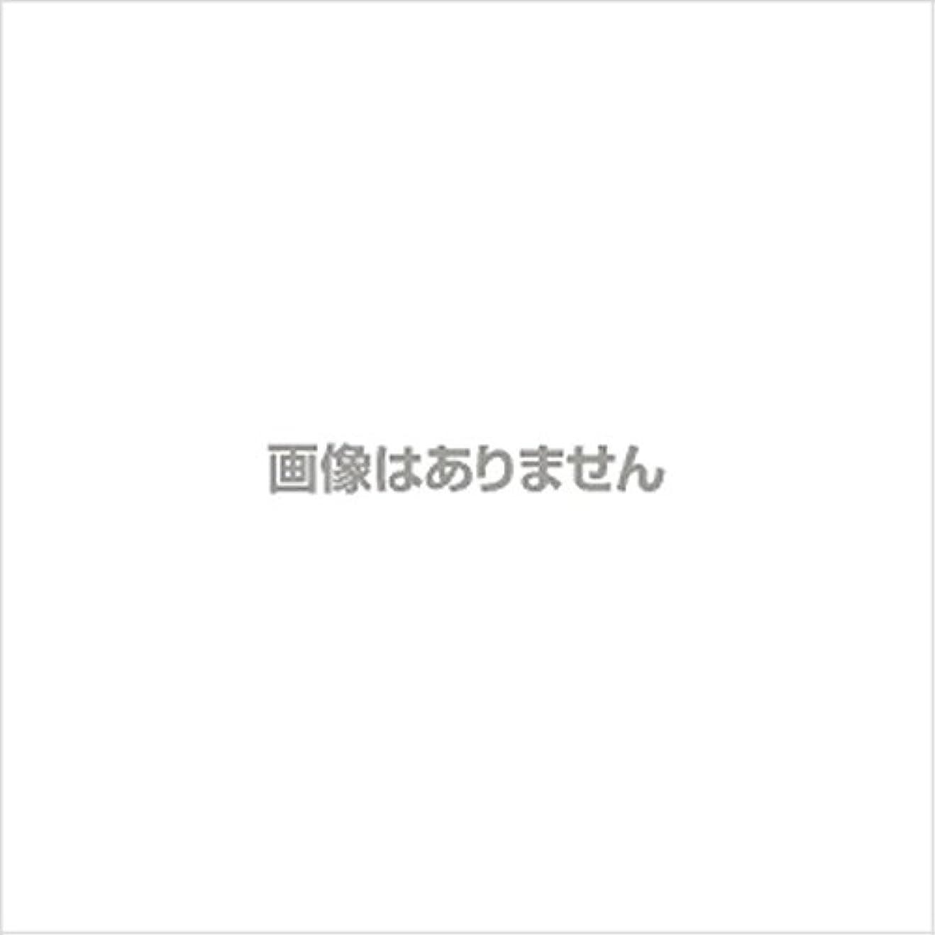 申請中衣服女王日立マクセル ポータブルシェーバー(乾電池式) M-SH-40GN