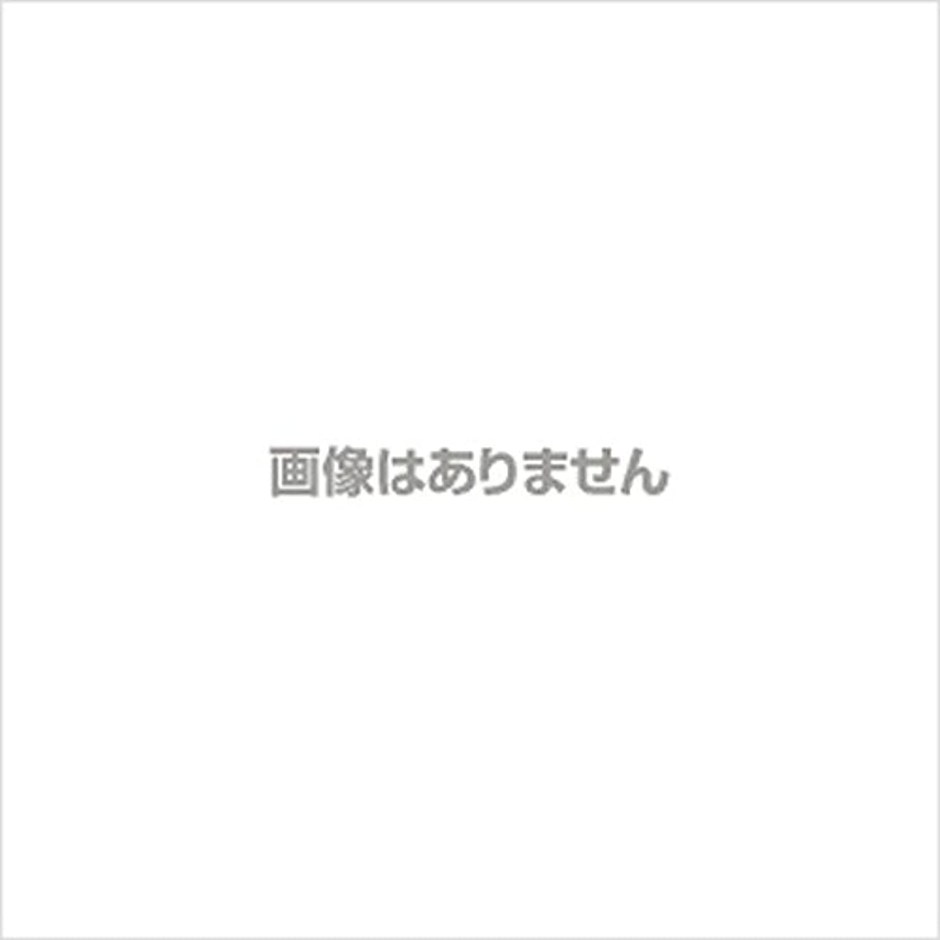 戻す管理証人【新発売】EBUKEA エブケアNO1002 プラスチックグローブ(粉付)Sサイズ 100枚入(極薄?半透明)