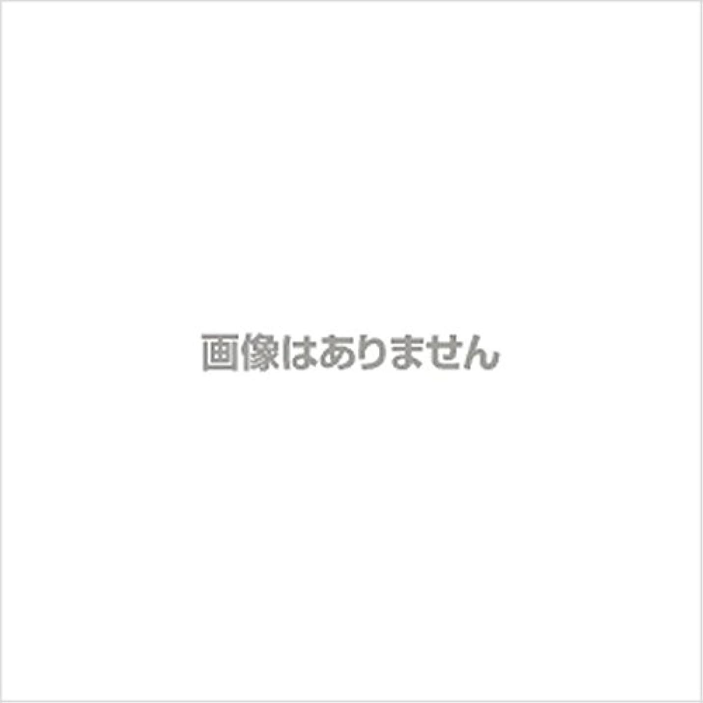 サラダスチール葉を集める【新発売】EBUKEA エブケアNO1004 プラスチックグローブ(パウダーフリー?粉なし)Sサイズ 100枚入(極薄?半透明)