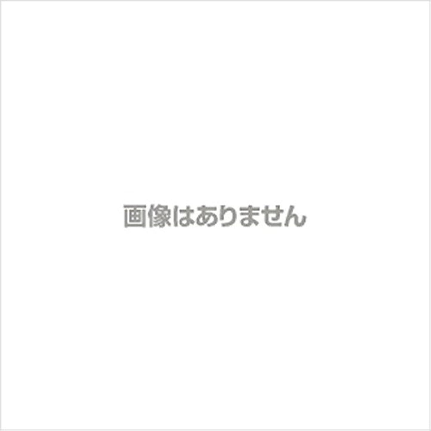 夜の動物園ボトルネック進む【新発売】EBUKEA エブケアNO1004 プラスチックグローブ(パウダーフリー?粉なし)Sサイズ 100枚入(極薄?半透明)