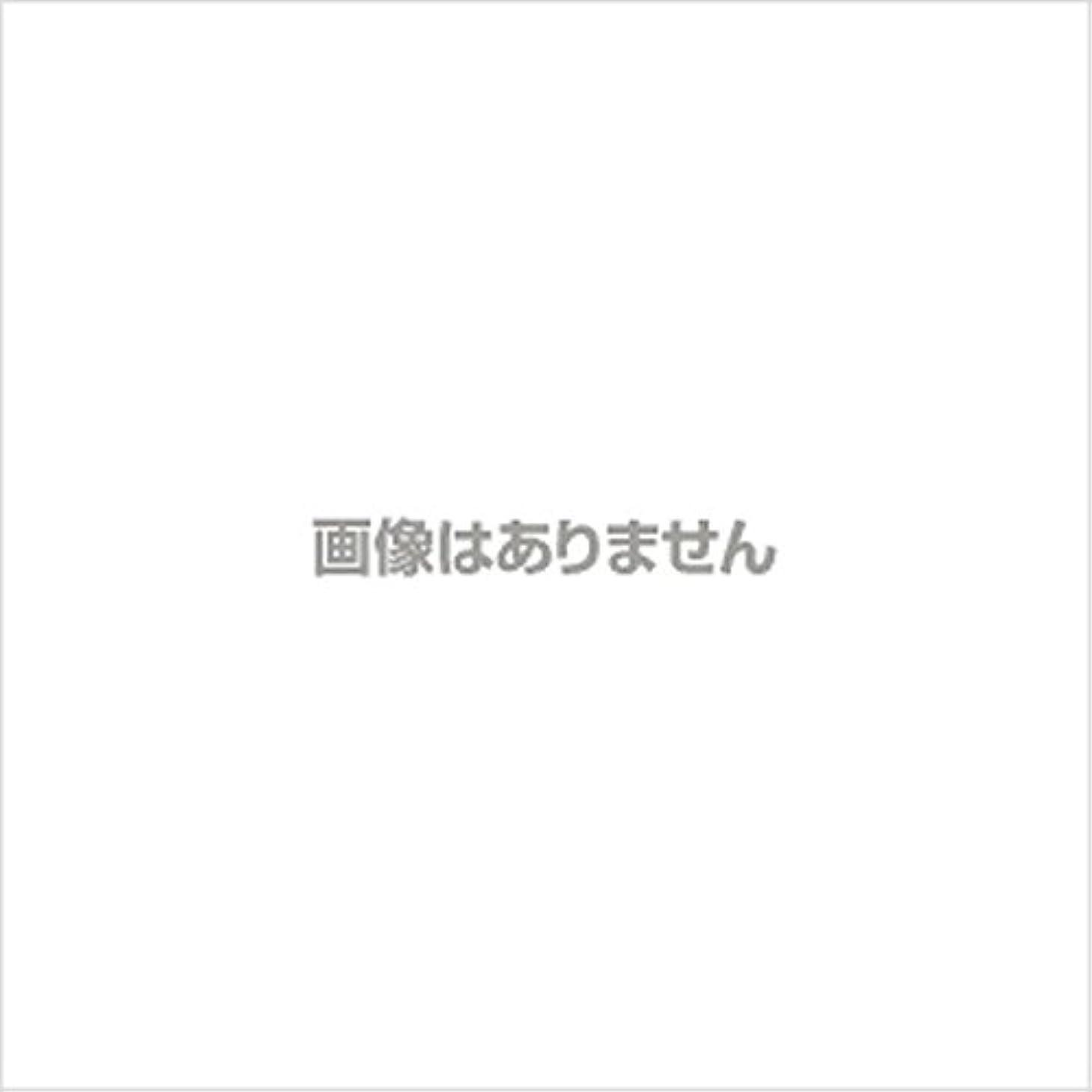 流戦略アテンダントニュージャスト ヘルパーグローブ S(500枚入) 【商品コード】4010300