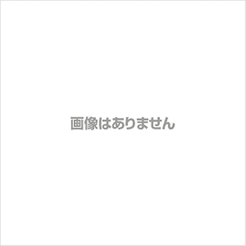 煙突硫黄引用日立マクセル ポータブルシェーバー(乾電池式) M-SH-40GN