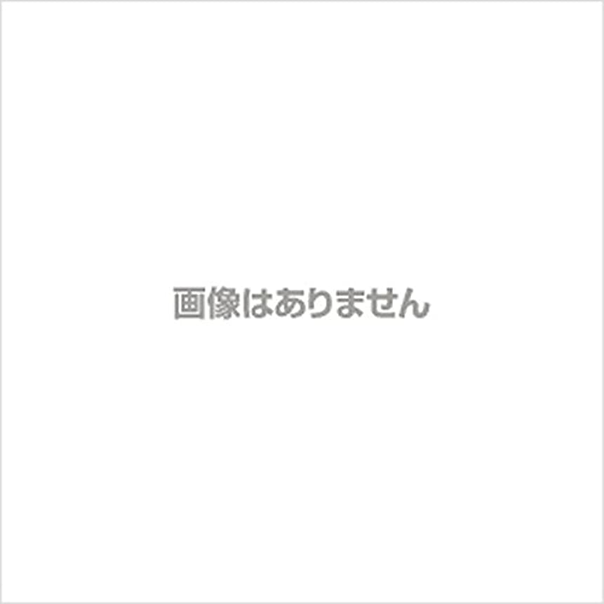 発表深い【新発売】EBUKEA エブケアNO1002 プラスチックグローブ(粉付)Mサイズ 100枚入(極薄?半透明)