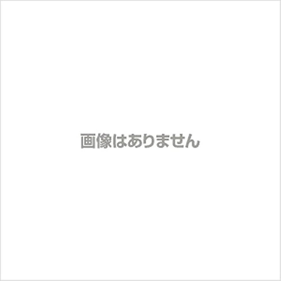 レクリエーション資本添付プラスチックグローブNO.3000 S