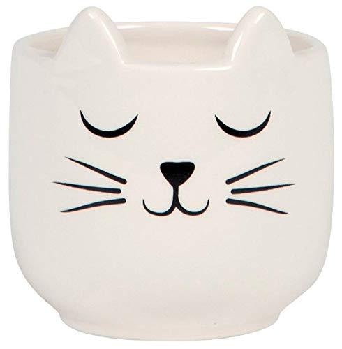 Grindstore Dekorative Verzierung Mini Cat's Whiskers Pflanzer