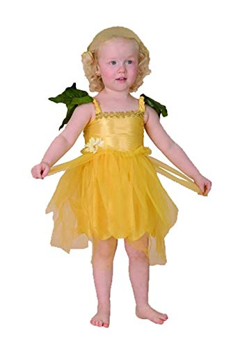 Disfraz de hada de flores para nias, para nios menores de 4 aos