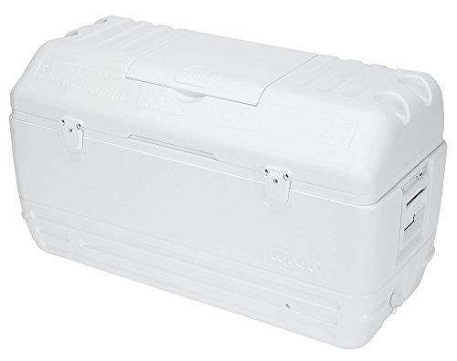 Igloo MaxCold Cooler (165-Quart, White)