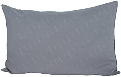 ALPS Mountaineering MicroFiber Camp Pillow (10-Inch x 20-Inch)