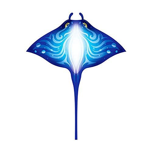 Cometa de Rayos aéreos, Cometa de Dibujos Animados de Cola Larga fácil de Volar para Adultos y niños, Gran Playa y Juguetes Familiares al Aire Libre