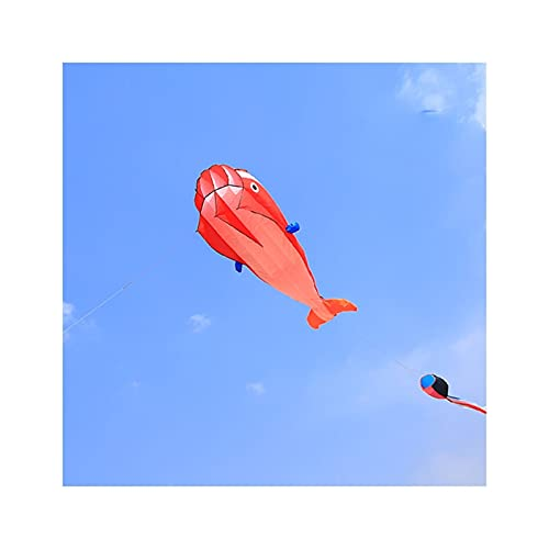 Drachen für Kinder & Erwachsene, leicht zu montieren Fliegenanfängerkites für Outdoor-Spiel, Strandausflug, großer Drachen mit langem Schwanz (Color : B, Line : 2296FT)