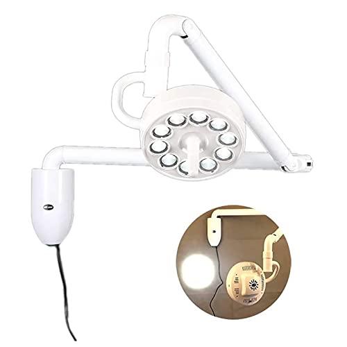 FASSTUREF Lámpara Dental sin Sombras 30W LED Colgante luz de Examen médico quirúrgico Brazo de Equilibrio Ajustable rotación Libre de 360 °