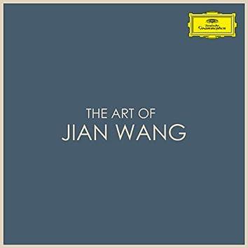 The Art of Jian Wang
