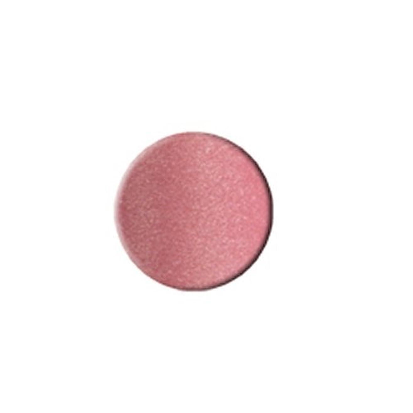 境界ロータリー言うまでもなくKLEANCOLOR Everlasting Lipstick - Perfect Pink (並行輸入品)