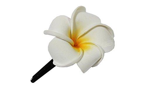 Naturesco Exotische Haarklemme Haarclip Blüte Frangipani weiß 4cm lang, 4,5x4,5cm