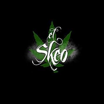 Stilo High, Vol. 1
