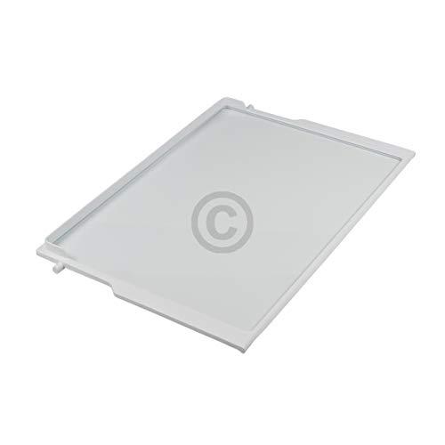 Glasplatte in weißem Rahmen für Kühlschrank 55 x 24 x 296 mm Siemens 00353028