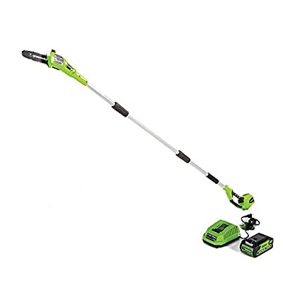Greenworks 40V 8-Inch Cordless Polesaw, 2.0Ah Battery and Charger Included 20672 from Sunrise Global Marketing, LLC