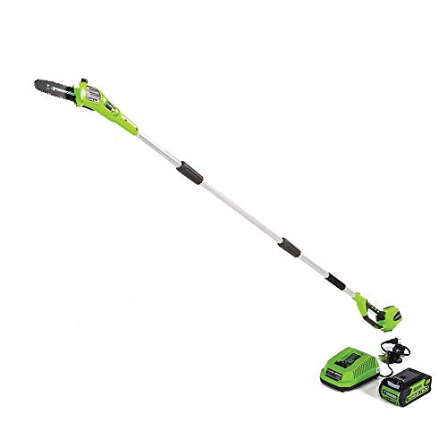 Greenworks 40V 8-inch Cordless Pole Saw, 2.0 AH Battery Included, 20672