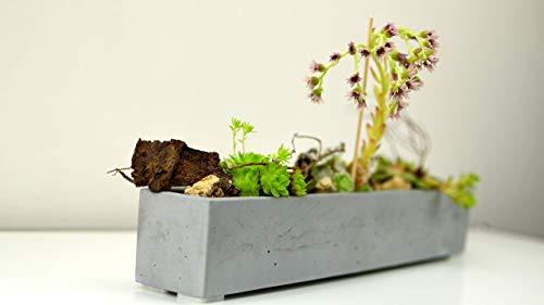 Pflanzschale Blumentopf Übertopf Beton grau Deko für innen handgemacht in Deutschland