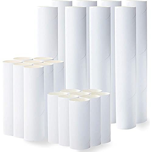 White Cardboard Tubes for Crafts (3 Sizes, 24 Pack)