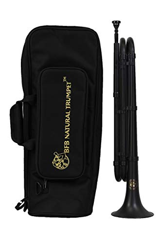 Brass for Beginners BfB 4310 Trompete mit Koffer und Mundstück