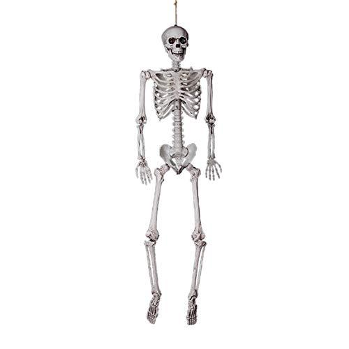 Lomsarsh Halloween Squelette, Taille réelle crâne Humain Squelette modèle de crâne Anatomique Meilleur décoration de fête d'halloween Prop