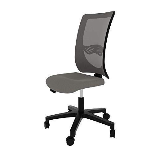 LEVIRA Bürostuhl, Schreibtischstuhl, Bürostuhl Ergonomisch Apollo - Grau