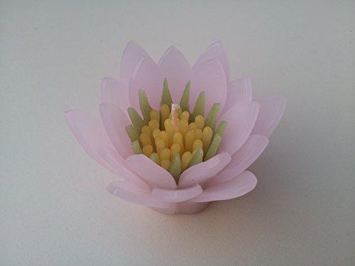 WASIWAX velas flotantes en varios colores de lirios de agua pequeño, Pinky light, Small