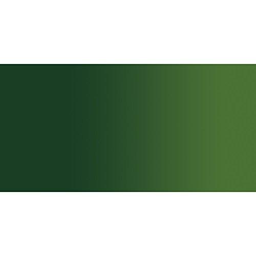 Holbein Duo Aqua Oil Sap Green (B) 40ml