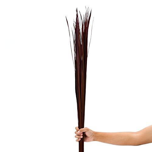 Leewadee racimo Secado para florero de Suelo – 60 Ramas largas y Sueltas, Ramo Decorativo para adornar viviendas o restaurantes, 120 cm, marrón